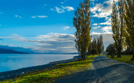 Looking North up Lake Te Anau from Bluegum Point